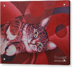 Red Feline Geometry Acrylic Print by Pamela Clements