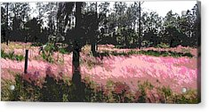 Acrylic Print featuring the painting Red Fire Grass Field Gulf Coast Florida by G Linsenmayer