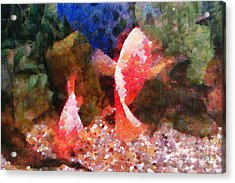 Red Fishes Painting Acrylic Print by Magomed Magomedagaev