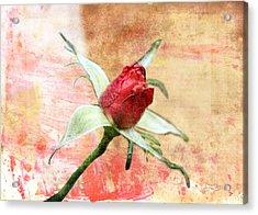 Acrylic Print featuring the digital art Red Flower 1 by Helene U Taylor