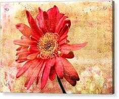 Acrylic Print featuring the digital art Red Flower 2 by Helene U Taylor