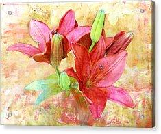 Acrylic Print featuring the digital art Red Flower 3 by Helene U Taylor