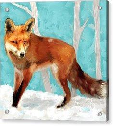Red Fox Acrylic Print by Enzie Shahmiri