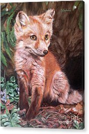 Red Fox Kit Acrylic Print by Nancy Andresen