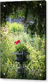 Red Geranium Acrylic Print by John Stuart Webbstock