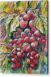 Red Grapes Acrylic Print by Terry Banderas
