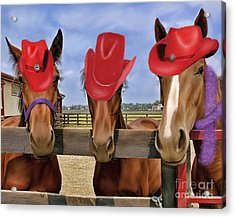 Red Hat Ladies Acrylic Print by Sami Martin