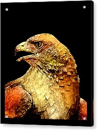 Red Hawk Art Acrylic Print by Mario Perez