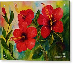 Red Hybiscus  Acrylic Print