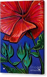 Red Ibiscus - Botanical Acrylic Print