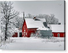 Red In White Acrylic Print by Larry Trupp