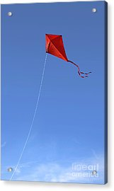 Red Kite In The Sky Acrylic Print by Diane Diederich