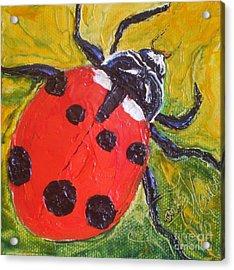 Red Ladybug Acrylic Print by Paris Wyatt Llanso