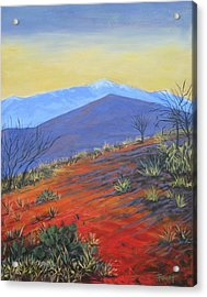 Red Landscape Acrylic Print by Gene Foust