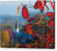 Red Leaves Blue Mountain Acrylic Print by Dorothy Walker