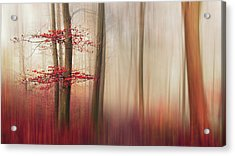 Red Leaves. Acrylic Print