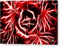 Red Lettuce Acrylic Print