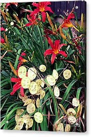 Red Lilly's Acrylic Print by Martha Yates