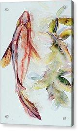 Red Mangrove Acrylic Print