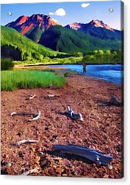 Red Mountain Driftwood Acrylic Print