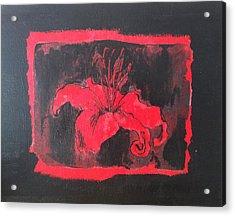 Red On Black Acrylic Print by Megan Washington