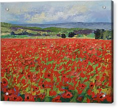 Red Oriental Poppies Acrylic Print by Michael Creese