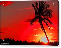Red Palm Acrylic Print
