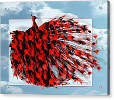 Red Peacock Acrylic Print by Yvon van der Wijk