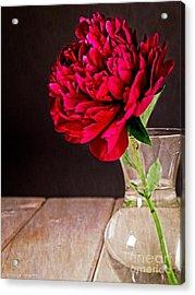 Red Peony Flower Vase Acrylic Print by Edward Fielding