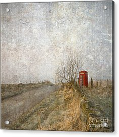 Red Phone Box Acrylic Print by Liz  Alderdice