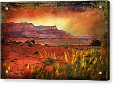 Red Planet Acrylic Print by Barbara Manis