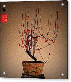 Red Plum Blossoms Acrylic Print by GuoJun Pan