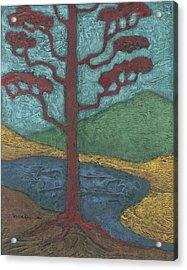 Red Ponderosa Acrylic Print