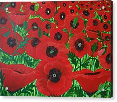 Red Poppies 1 Acrylic Print