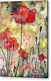 Red Poppies Botanical Watercolor And Ink Acrylic Print