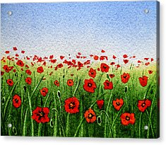 Red Poppies Green Field And A Blue Blue Sky Acrylic Print