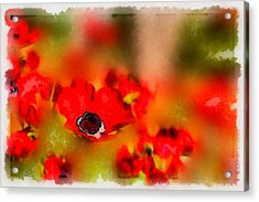 Red Poppies Inspiration Acrylic Print
