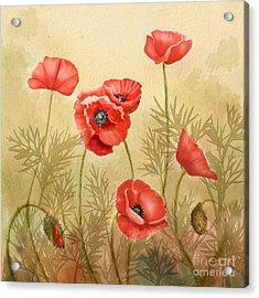 Red Poppies Three Acrylic Print