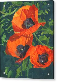 Acrylic Print featuring the painting Red Poppies Three by Lynne Reichhart