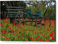 Red Poppies With Wagon Acrylic Print