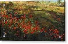 Red Poppy Field Acrylic Print by Cecilia Brendel