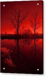 Red Reflections Acrylic Print by Miguel Winterpacht