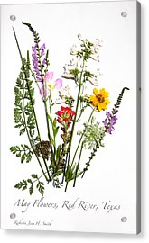 Red River May Flowers Acrylic Print