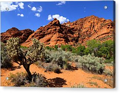 Red Rock And Blue Acrylic Print by Nick Oman