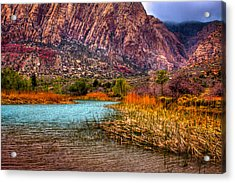 Red Rock Canyon Conservation Area Acrylic Print by David Patterson