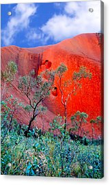 Red Rock Face Central Australia Acrylic Print