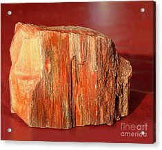 Acrylic Print featuring the photograph Red Rock by Lena Wilhite