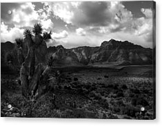 Red Rock Mountains Acrylic Print