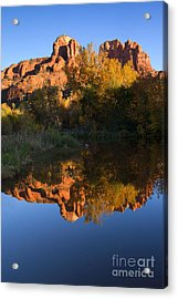 Red Rock Reflections Acrylic Print by Mike  Dawson