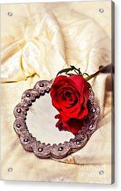 Red Rose Acrylic Print by Amanda Elwell